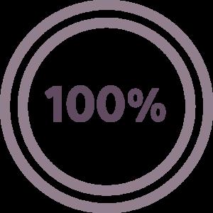 100% Icon